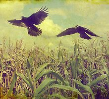 Crows Of The Corn by gothicolors