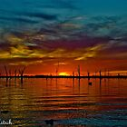 Lake Mulwala sunset by Kat36