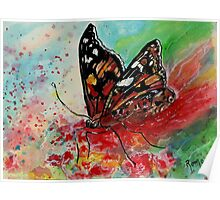 Wings of Passion - Butterfly Poster