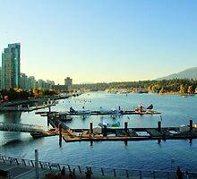 Autumn's Light on Coal Harbour 1 by Tracy Friesen