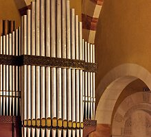 Organ pipes  by PhotoStock-Isra