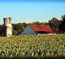 Old Farm v1 by Sanguine