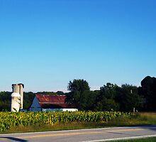 Old Farm (distant) by Sanguine