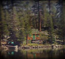 The Little Cabin by Laurie Search