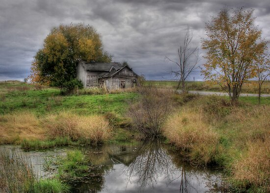 Rural Decay in Alex Bay by Lori Deiter