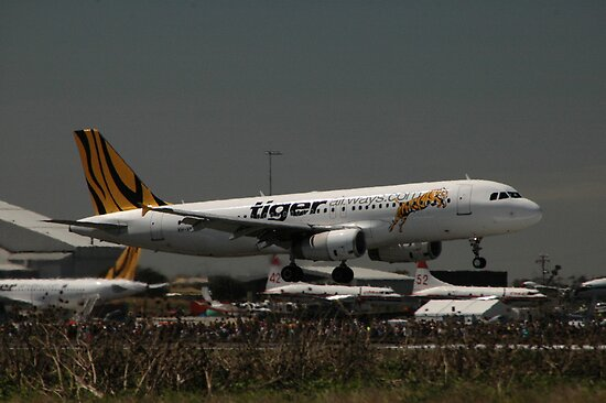 Tiger Airway Airbus Landing, Avalon Airport, Australia 2010 by muz2142