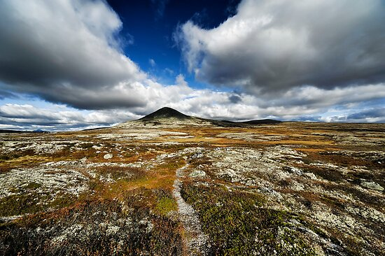 Rondane National Park - Norway by geirkristiansen