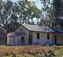 Shearers' Quarters, Callandoon, Qld, Australia (panorama) by Margaret  Hyde