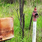 Old fire hydrant by James Milton