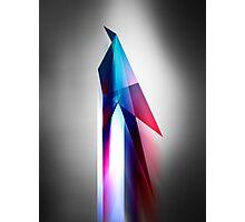 Origami Bird Vector Art Poster Photographic Print