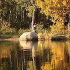 Autumn Reflections by mrivserg