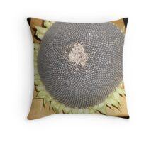 Sunflower Seed Pod Throw Pillow