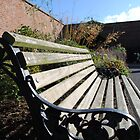 Bench by alexandriaiona