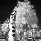 Pierrot in IR - Geelong by Hans Kawitzki