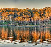 Morning Light, Narrabeen Lakes, Sydney Australia - The HDR Experience by Philip Johnson