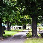 Cemetery path by bobbykim666