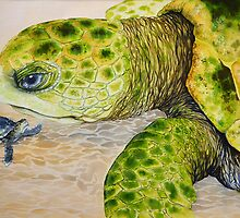 Turtle Love by Carol McLean-Carr