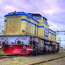 Locomotives of Vrnamo I by Joo Figueiredo