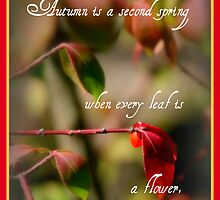 """Autumn is a second spring. . ."" by Paula Tohline  Calhoun"