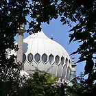 A Peak at Brighton Pavilion by janlou