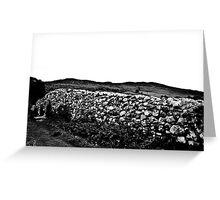 Ireland in Mono: The First Time I Ever Saw You Greeting Card