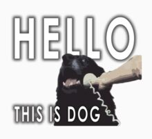 Hello, This is Dog V2 by dbatista