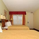 quality inn & suites walt disney world by jhonstruass