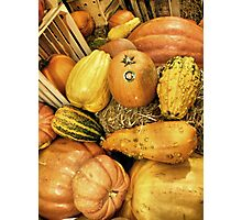 Crates And Gourds Photographic Print