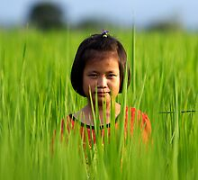 Thai Girl in Rice Paddy iPhone Case by David Joshua Ford