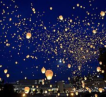 Chinese Lanterns 4 by Debbie  Maglothin