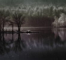 Loch Ard Evening by Linda  Morrison