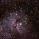Eta Carina Nebula by Cole Stockman