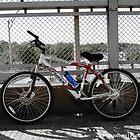 Cycle by JasSanchez