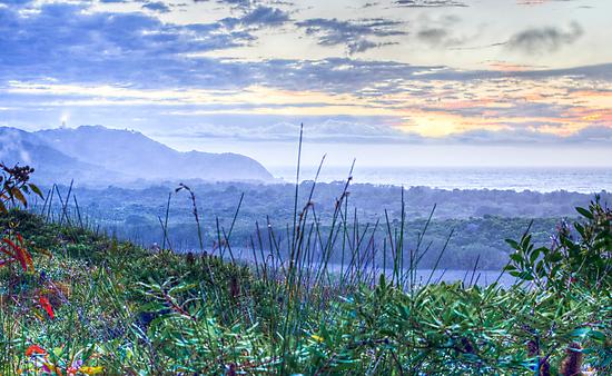 Misty Arakwal Dawn - Byron Bay by Cheryl Styles