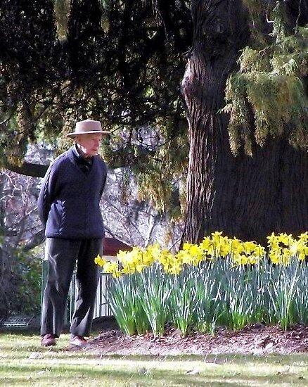 Old Man In The Garden by Cheryl Craig