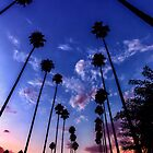 California Sunset by Firesuite