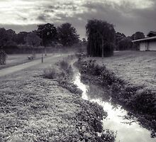 Autumn Morning by the Pymmes Brook by Phill Sacre