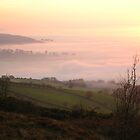 Misty Evening View of Cheshire from Teggs Nose by MiRoImage
