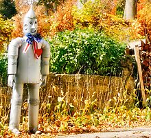 The Tin Man by Nadya Johnson