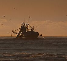 Trawler with birds and dolphins #2 by Odille Esmonde-Morgan