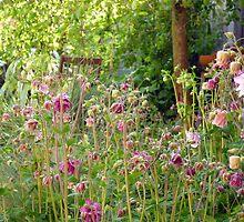 English Garden In Summer  by Antoinette B