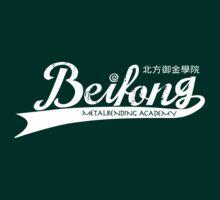 Beifong Metalbending Academy [V2] by cyycyy