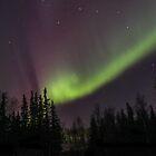 Dancing lights by Tyler Olson