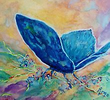 Whispering Blue - Butterfly by Robin Monroe