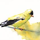 Goldfinch by Louise De Masi