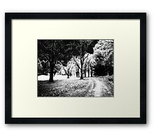 Maudslay Spirit Path   Framed Print