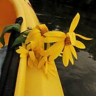 Flowers and a Kayak by Andrea Morris