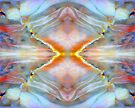 Angel Fire (Carrisite Jasper) by Stephanie Bateman-Graham
