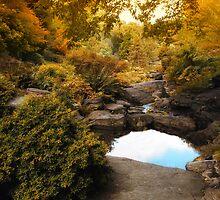 Autumn Rock Garden by Jessica Jenney