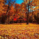 Fall Glory ~ Isolated Cottage Enveloped in Orange Foliage by Chantal PhotoPix